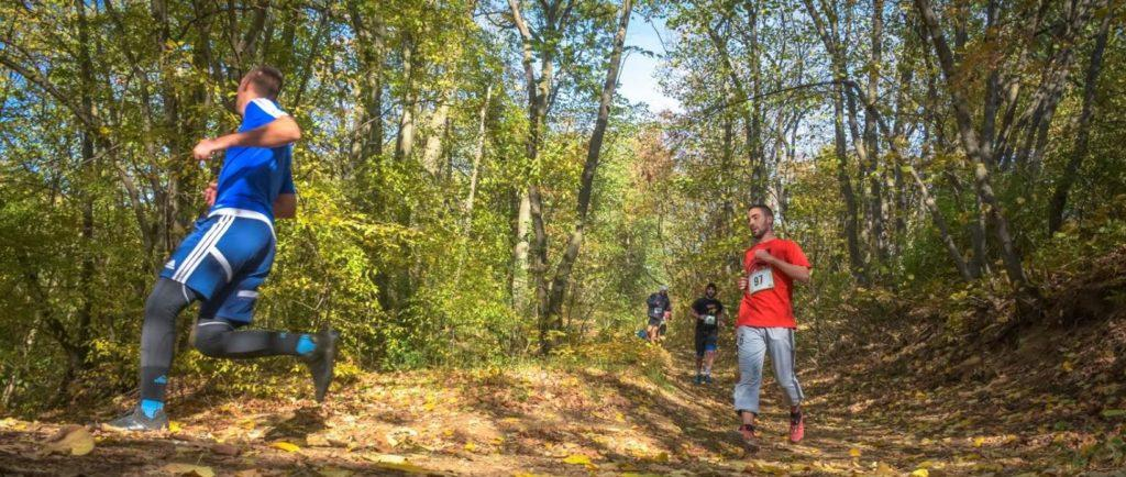 A group of people running in the woods  Description automatically generated with medium confidence