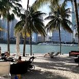 secret hidden beach in Brickel key in Miami, Florida, United States