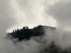 Photo: Day 42 - View of the Forest Shrouded in Rain Cloud