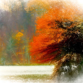 Fall Lake by Dave Walters - Digital Art Places ( digital art;, rebel canon, fall, nature, colors )