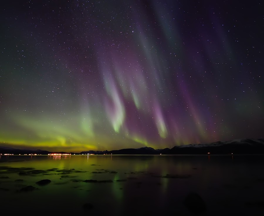 Geo Magnetic Storm by Marius Birkeland - Landscapes Waterscapes ( reflection, sky, northernlights, stars, northern lights, aurora borealis, aurora )