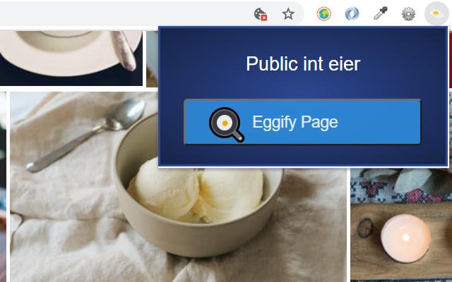 Public int eier