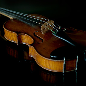 Violin in dark  by Cristobal Garciaferro Rubio - Artistic Objects Musical Instruments ( reflection, violin, reflections, viola )