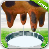 Milk The Cow Latest Game