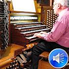 Ringtones de sonidos de órgano icon