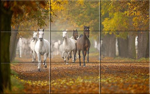 Puzzle - Beautiful Horses 1.24 screenshots 2