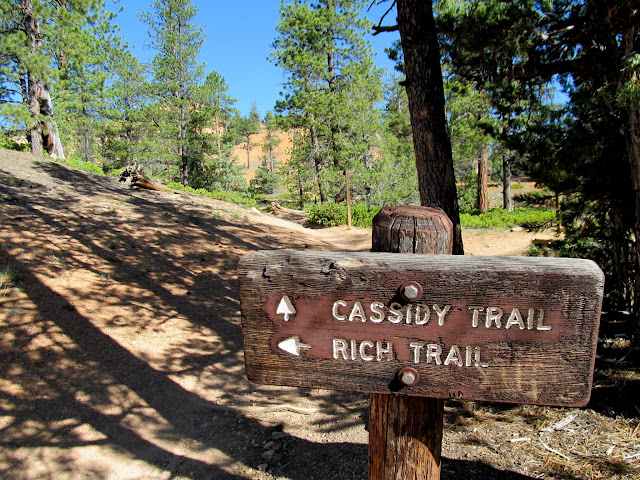 Cassidy Trail and Rich Trail junction