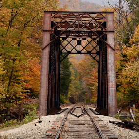 White Mountains in Autumn by Peter Miller - Transportation Railway Tracks