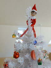 Photo: December 1 - atop the Christmas tree