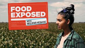 Food Exposed With Nelufar Hedayat thumbnail