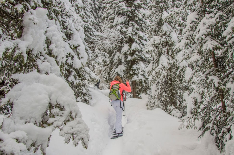 sneeuwschoenwandelen-Tirol