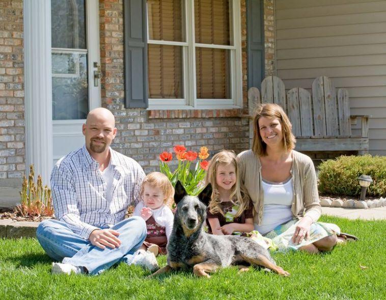Is a Blue Heeler a good family dog - Bark How