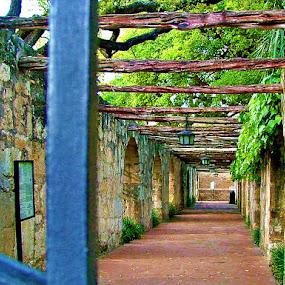 Stone Walkway by Elaine Tweedy - Landscapes Travel