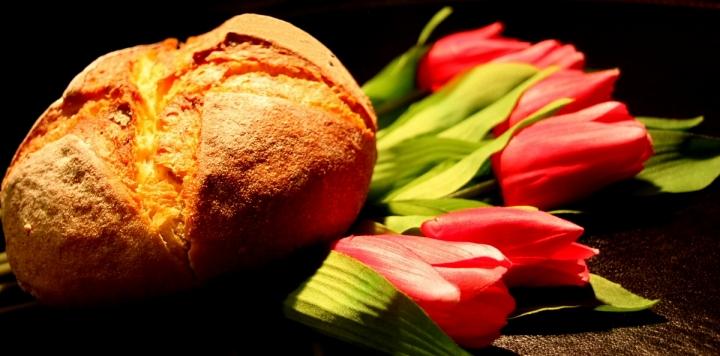 Pane e tulipani di daviderm