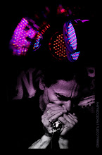 Photo: the lights, his hands and his harmonica