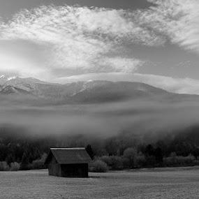 one morning by Anže Papler - Black & White Landscapes