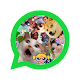 Download WAStickers Random 2020 For PC Windows and Mac