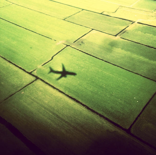 Fly di Steo