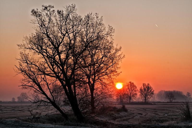 Al sorgere del sole di Sergio Locatelli
