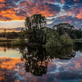 Centennial Park - Duck pond by Rebecca Ramaley - City,  Street & Park  Vistas ( clouds, sky, australia, sunrise, panoramic, sydney )