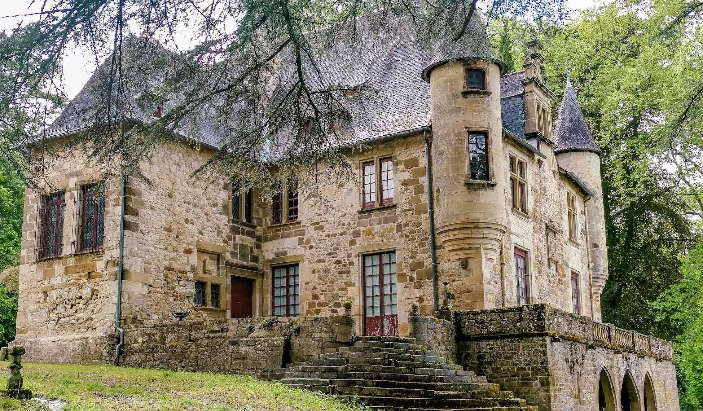 Castle Terrasson-Lavilledieu