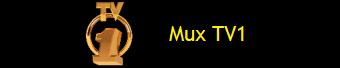 MUX TV1