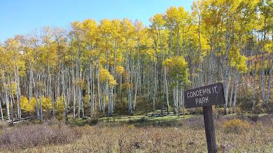 Photo: Condemn It Park - entrance to the Pilot Knob Roadless Area.