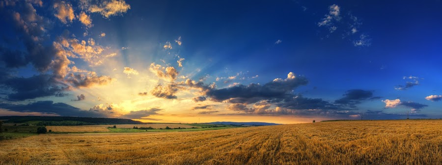 Hungarian skies pt.132. by Zsolt Zsigmond - Landscapes Prairies, Meadows & Fields ( wheat, clouds, hungary, scape, hdr, colorful, cloudscape, wide, landscape, hungarian, panorama, sun, skies, field, sky, nature, sunset, sunrays, summer, scenery, gold, light, skyscape )