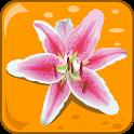 Flowers: Quiz icon