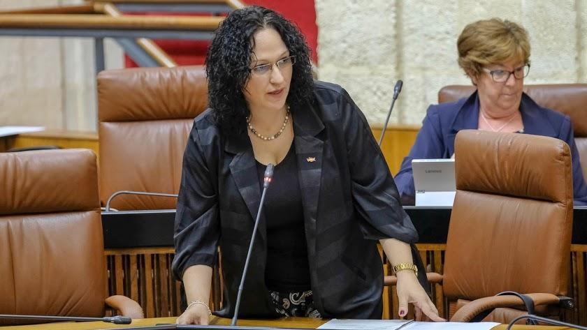 Luz Belinda Rodríguez, en el Parlamento Andaluz.