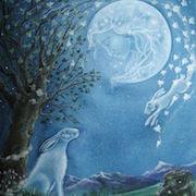 К чему снится белый заяц?