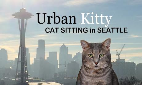 Cat Sitting Urban Kitty Seattle Cat Sitting Urban