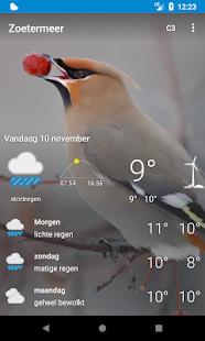 Zoetermeer - weer, dieren - náhled