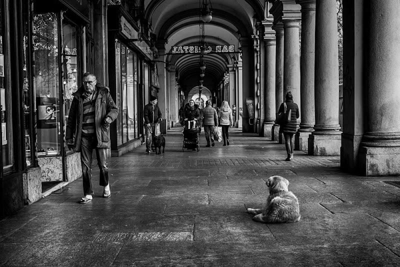 Che stanchezza... di Tiziana Detoni