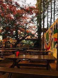 Rasta Cafe photo 29