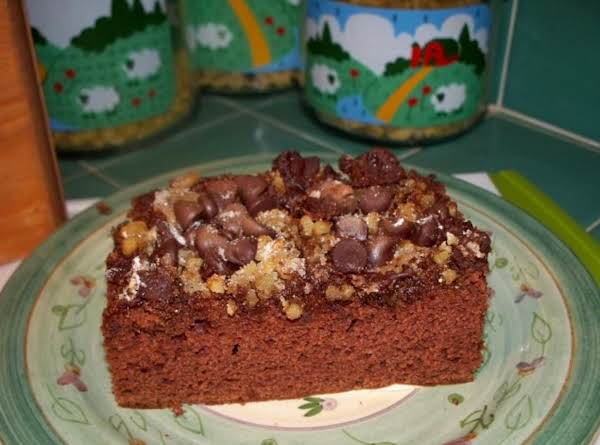 Chocolate Chip Applesauce Cake Recipe
