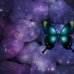 wallpaper  foto by Corali Reciful - Digital Art Abstract (  )