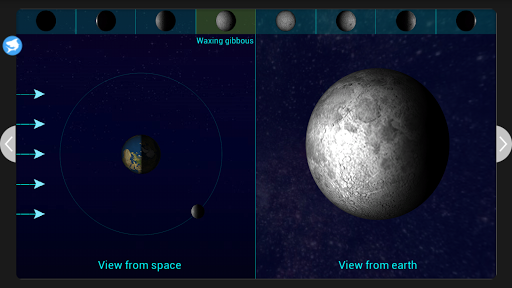 Moon Phases MarkSharks