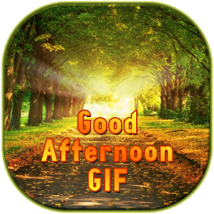 Good Afternoon GIF