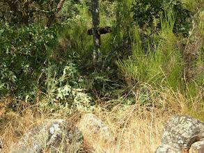 Photo: Antiguo Cementerio de San Roque