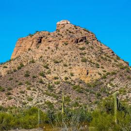 Arizona desert by Dustin Wilcox - Novices Only Landscapes ( sand, mountain, desert, arizona, cactus )