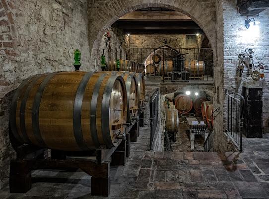 Desiderio di un grande vino. di Luca160
