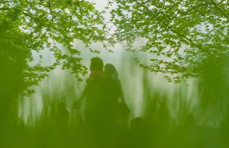 fantasmi verdi di lorella