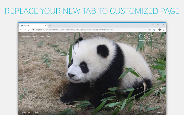 Panda Wallpaper HD Custom New Tab
