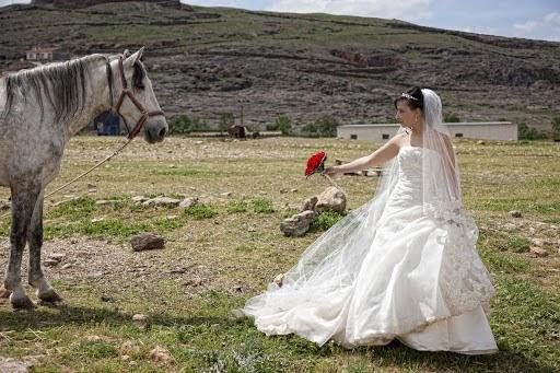 Fotógrafo de bodas Miguel Herrada Soler (fotomateos). Foto del 25.06.2016