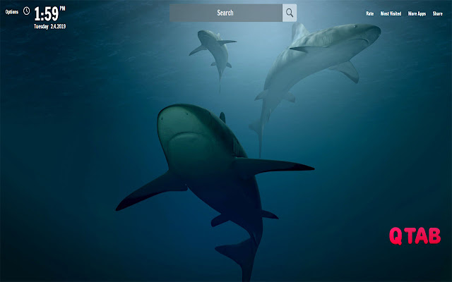 Shark New Tab Shark Wallpapers