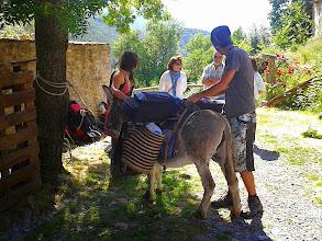 Photo: Pelegrinos assistés