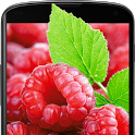 Raspberries Live Wallpaper icon