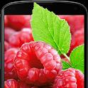 Raspberries Live Wallpaper icon