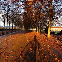 Fotografo in bici,  Lucca, Passeggiata delle Mura  di